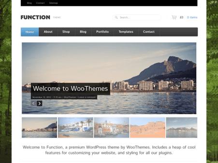 """Function"" theme screenshot"