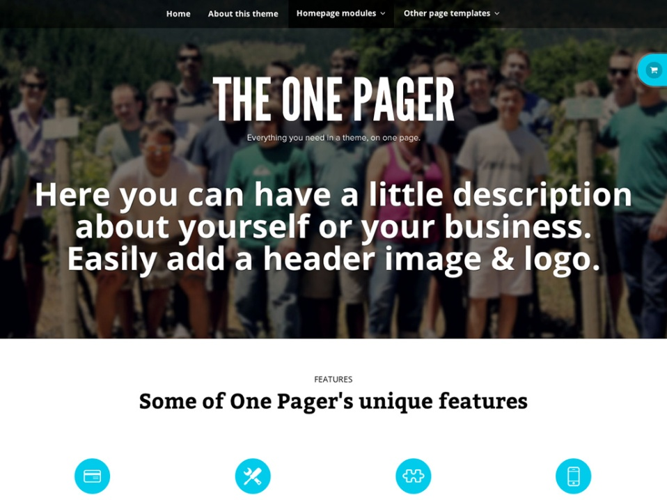 theonepager