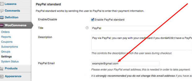 Insert your PayPal Email