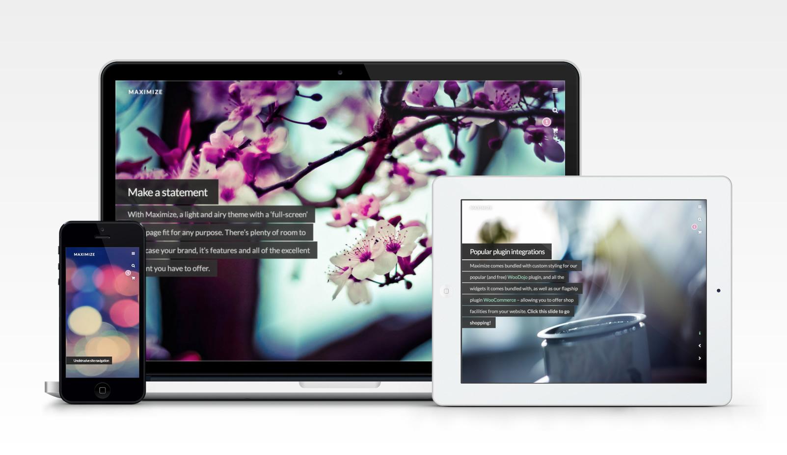 maximize-blog