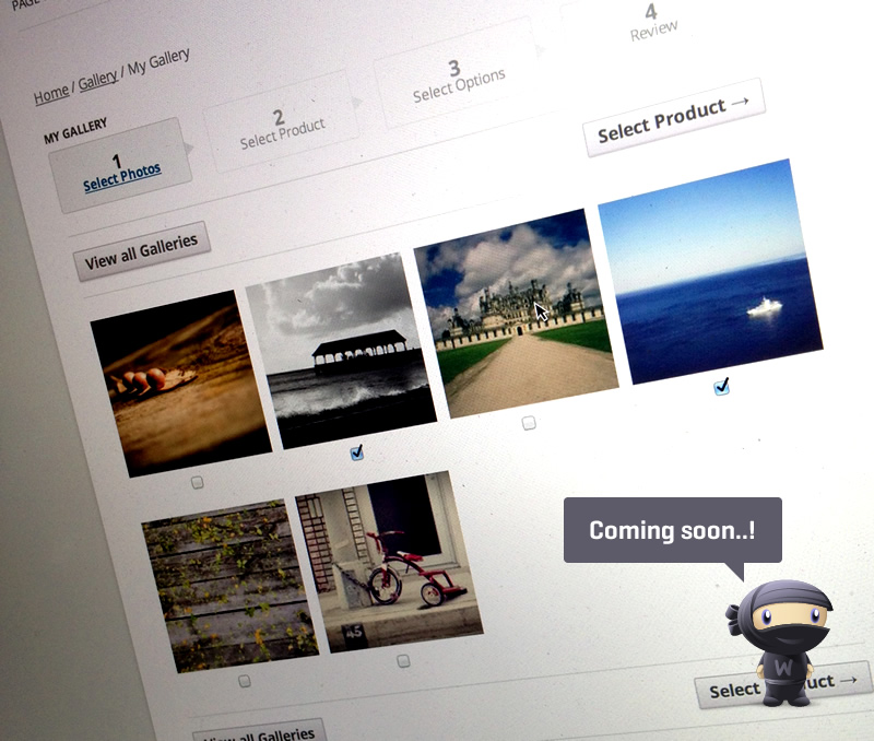 A sneak peek of the upcoming WooCommerce photography extension