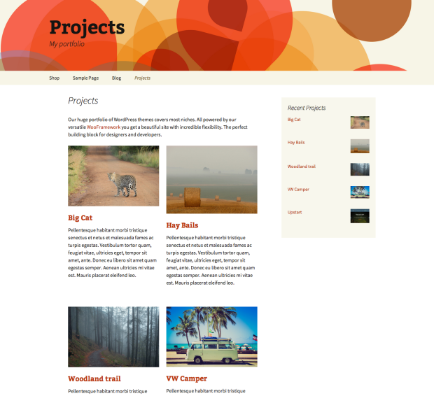 Projects display