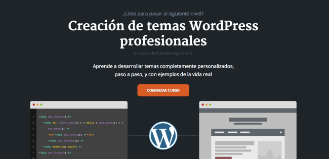 Screenshot of the Professional WordPress theme creation course shown on Francisco's website.