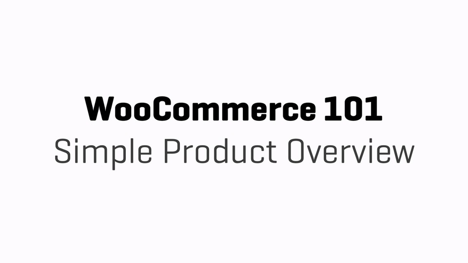 WC101 - Part 10b - Simple Product Overview