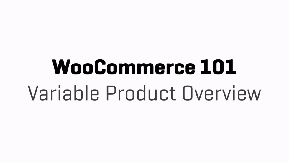 WooCommerce 101 - Part 10e - Variable Product Overview
