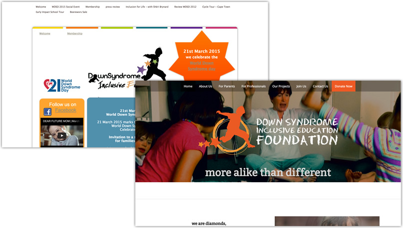 The Down Syndrome Inclusive Education Foundation
