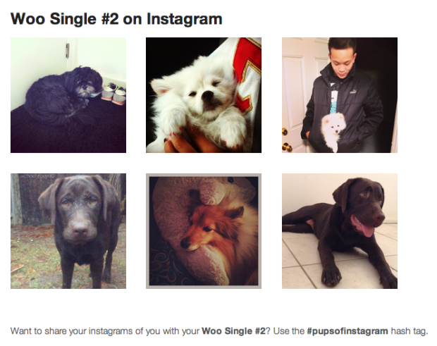 The extension in action. Let's just pretend you sell cute puppy photos. There's likely a market for that, you know.