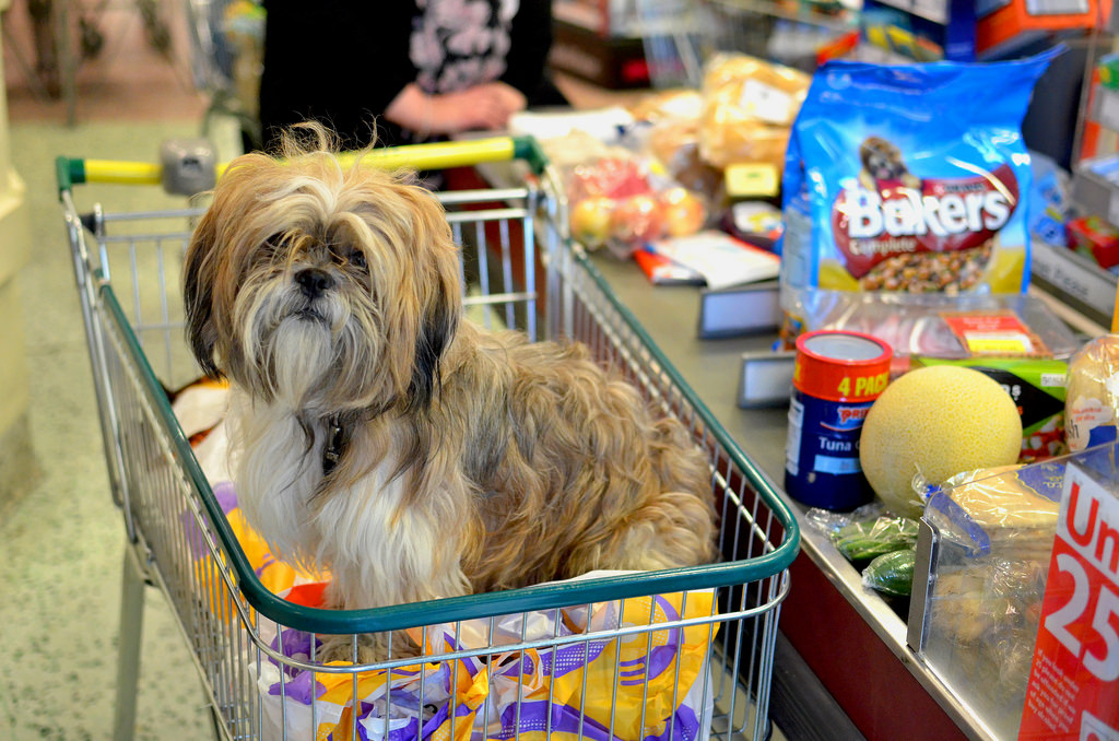 Let customers order online and pay when they pickup -- a timesaver for everyone. And Fluffy gets her food faster, too. (Image source: Darren Johnson / iDJ Photography [CC])