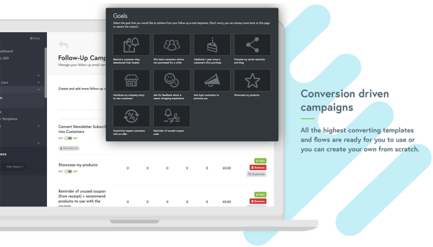 Conversion-driven campaigns.