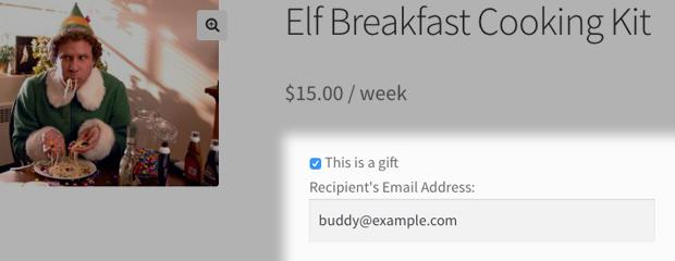 Subscription recipient email field screenshot