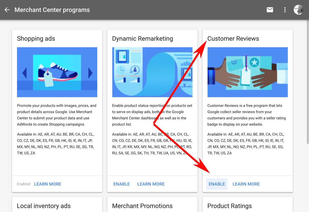 Google Customer Reviews Program
