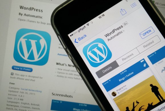 Read more about WordPress hitting the 30 percent mark