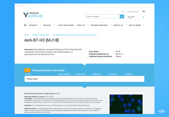 An antibody product page using Ajax calls to pull in different levels of product information
