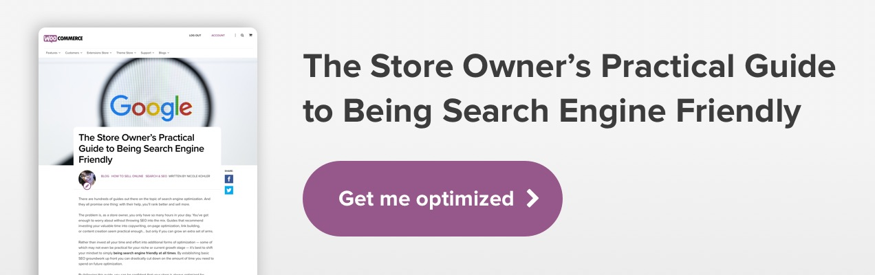 The Store Owner's Practical Guide to Being Search Engine Friendly