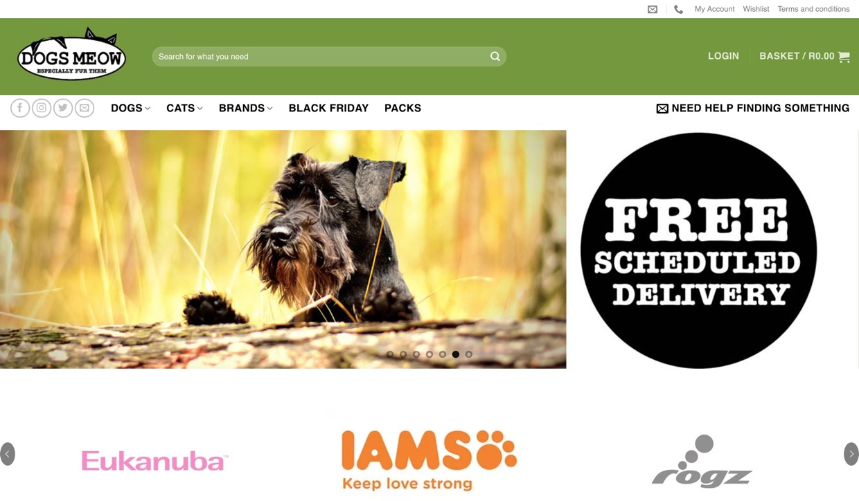 The homepage of dogsmeow.co.za