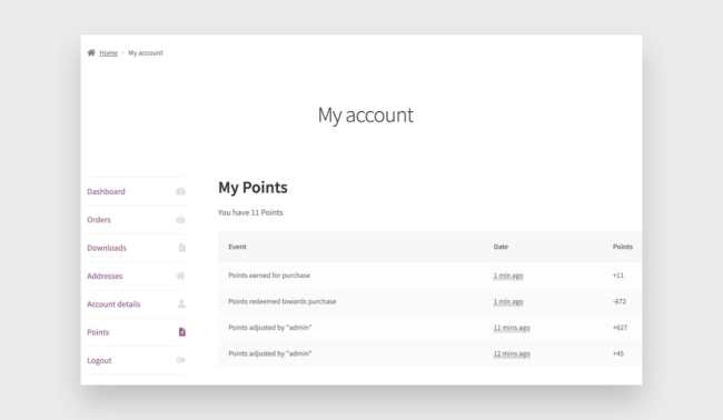 The My Points screen in the My Account dashboard.