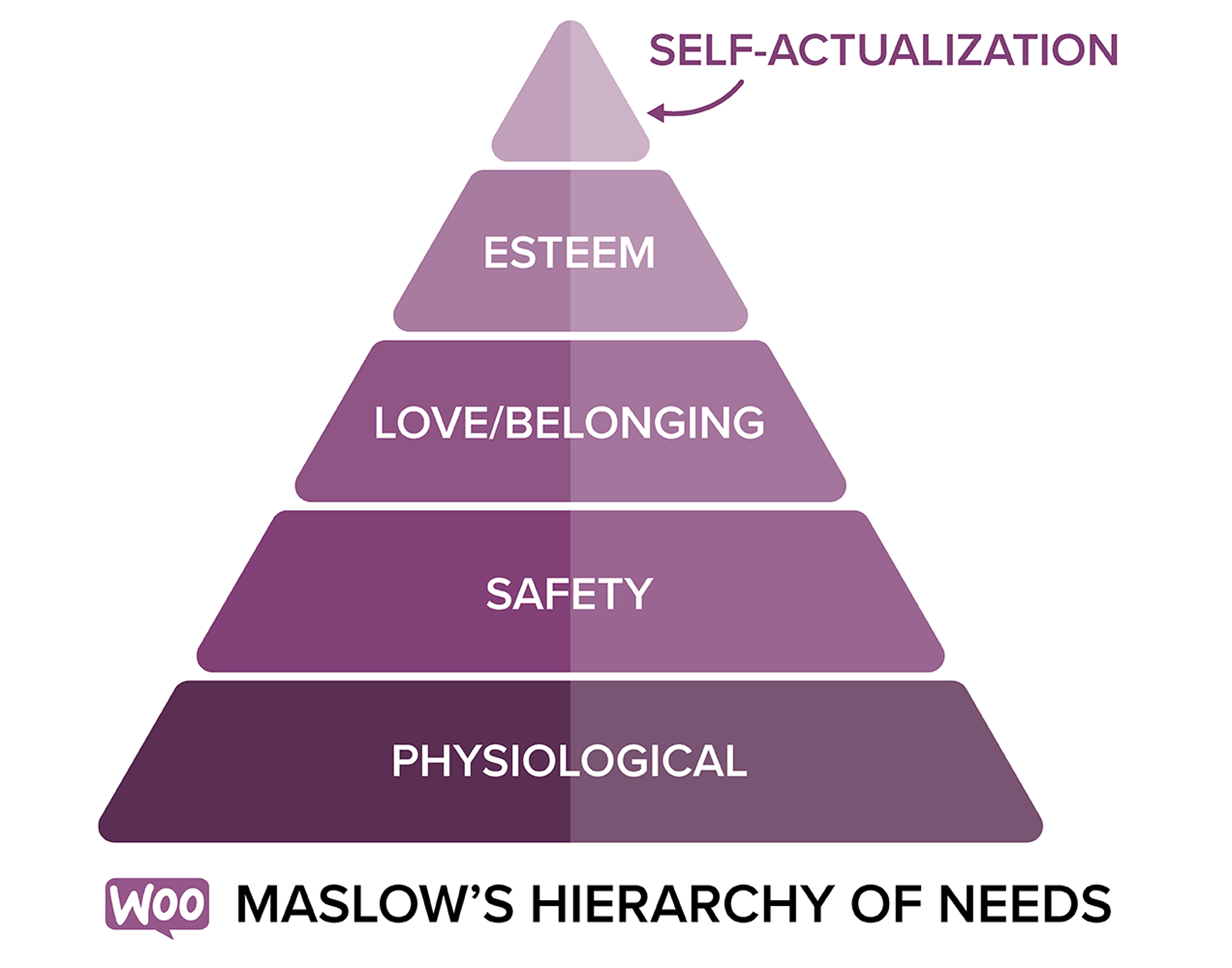 Maslow's Hierarchy of Needs, which outlines the needs of your customers.