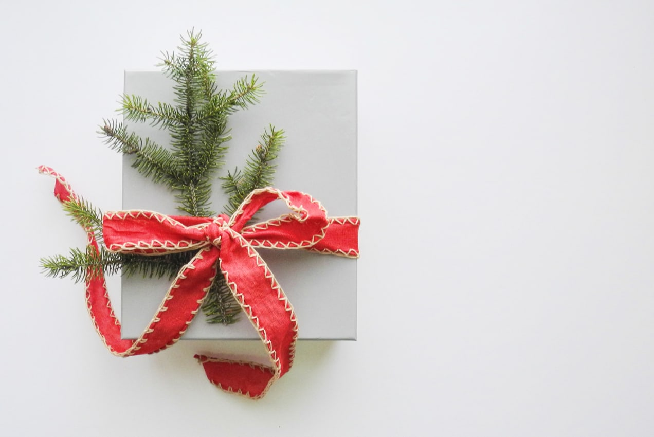 holiday gift wrapped with red ribbon and pine needles