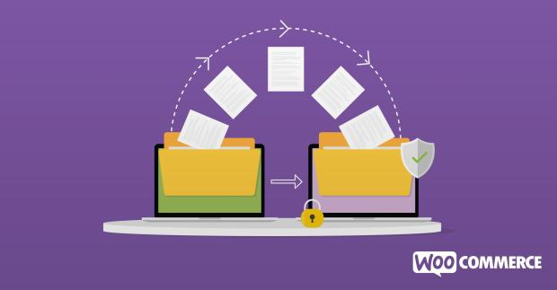 illustration files migrating between Shopify and WooCommerce