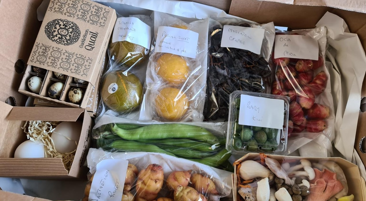 box of food from First Choice with fruit, vegetables, and eggs